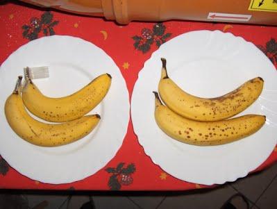 banana day 6
