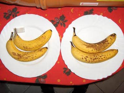 banana day 7