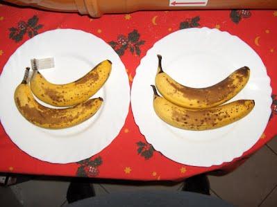 banana day 8